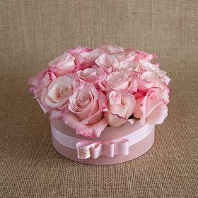 Box Rosas Cor de Rosa