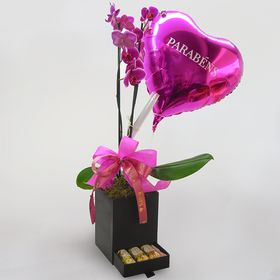 kit orquídea, balão e chocolate