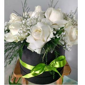 Box 8 Rosas Brancas