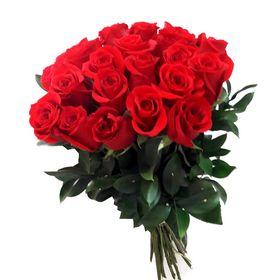 24 Rosas Colombinas