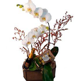 Orquídea Branca 2 Hastes, Ferrero Rocher e Mini Espumante Chandon