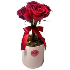 thumb-topiaria-com-5-rosas-0