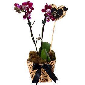 "Mini Orquídea ""Love"""