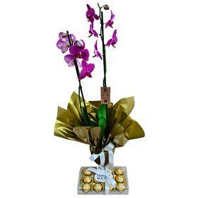 Orquídea Roxa com Ferro Rocher