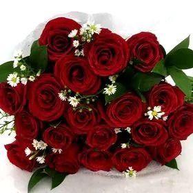 Buquê 25 rosas