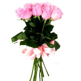 Buquê 12 Rosas cor de rosa amarradas com laço de fit
