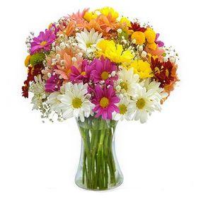 arranjo de flores do campo