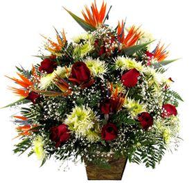 Corbeilles de estrelizia, flores do campo e rosas