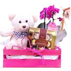 Caixa com mini orquídea, urso e Ferrero Rocher