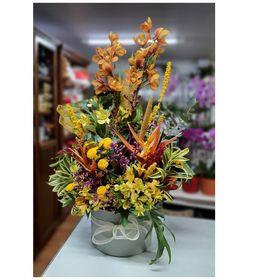 thumb-orquidea-com-flores-mistas-1