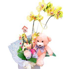Box com Orquídea, Usinho e plaquinha
