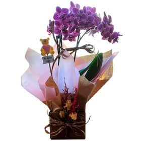 Mini Orquídea Premium