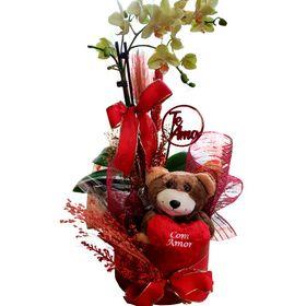 Box mini orquídea, urso e plaquinha
