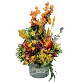 Orquídea  com flores mistas