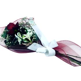 Rosa solitária na tela